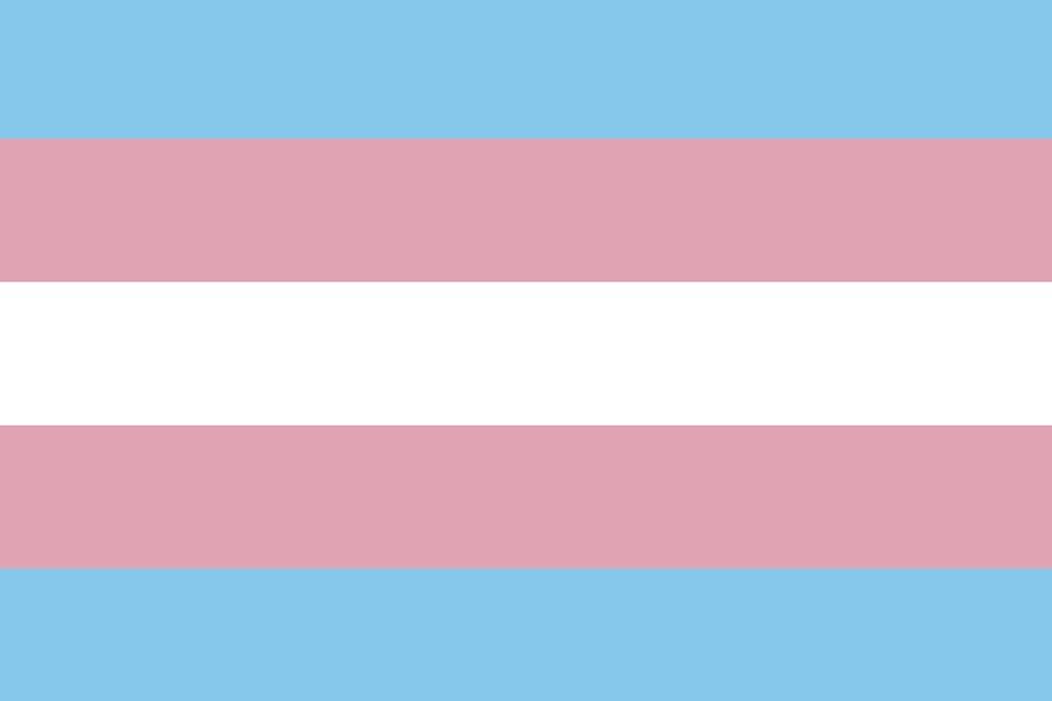 "Gov. Signs Host of Bills: New Law Criminalizes Calling Transgender Elderly ""Preferred"" Gender Pronouns"