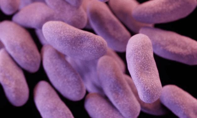 'Nightmare Bacteria' Stalk U.S. Hospitals