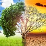 Climate Change is a Public Health Crises: Blacks Mostly Absent from The Conversation