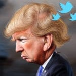 President Trump Condemned for Tweet on Voting