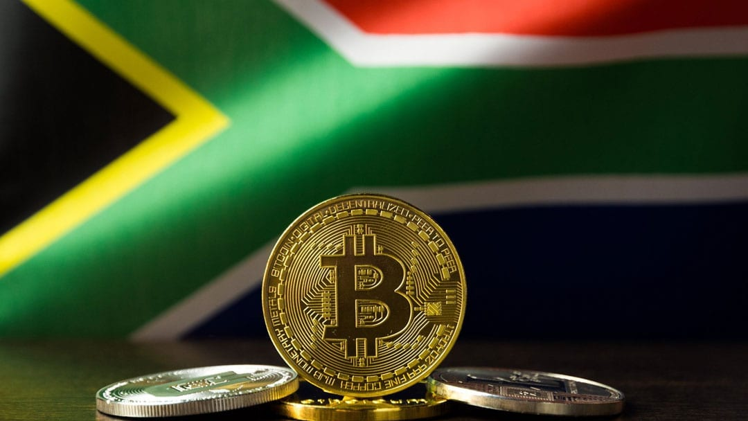 Cryptocurrency Experiment May Signal Economic Dangers for South Africa's Black Majority