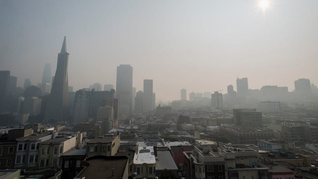 The New West: Smoke In The Sky, A Purifier At Home