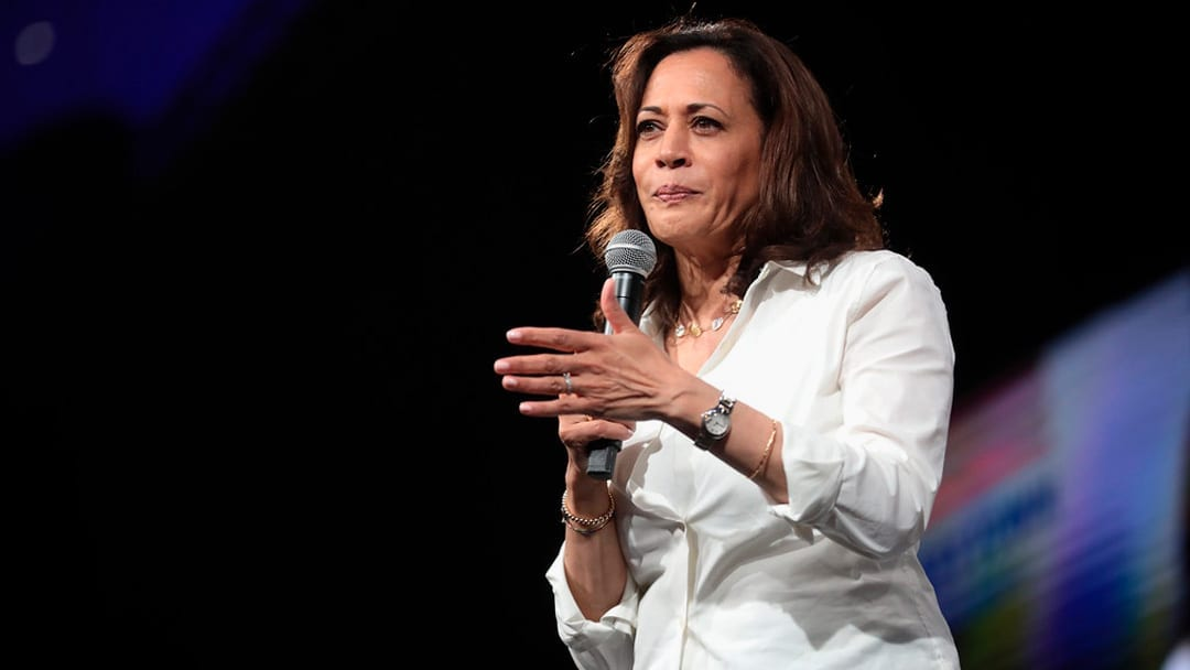 Harris, Warren Compete for Support from Black Female Voters