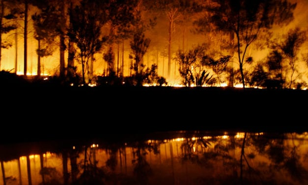 When it comes to wildfires, should California be more like Australia?