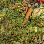 Lawmakers should reject one-size-fits-all approach to disposing organic waste