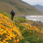 AB 3030 protects biodiversity, increases opportunities for access to nature