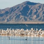Despite unprecedented times, natural resources should remain important to the Legislature
